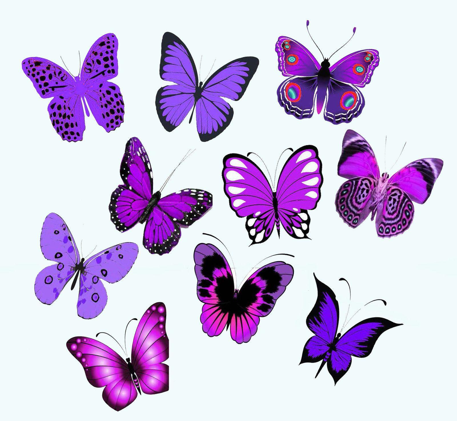 395aud 30 x 5cms purple violet butterflies edible