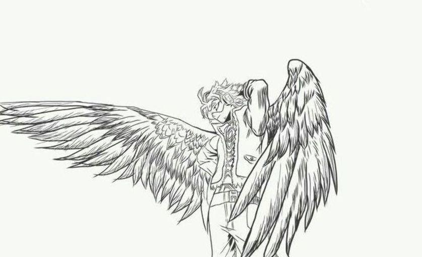 Galeria De Imagenes Hawks Boku No Hero 11 Hero My Hero My Hero Academia Manga