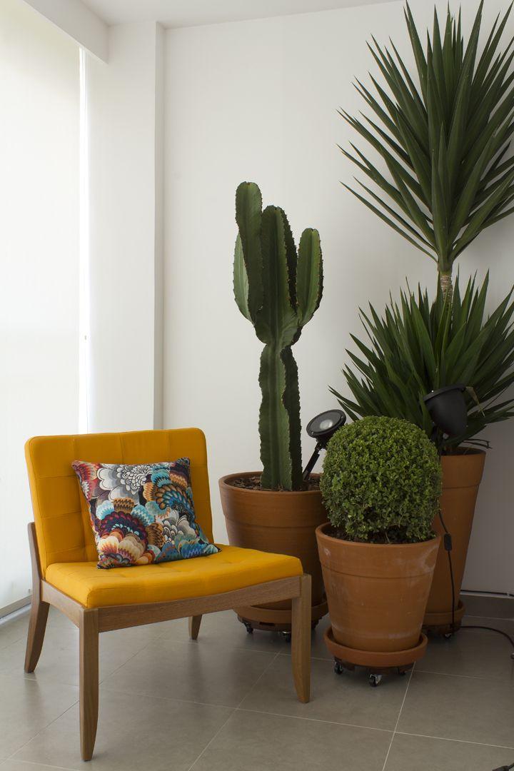 Ap sutilmente colorido cosas casa plantas interiores for Tipos de plantas para decorar interiores