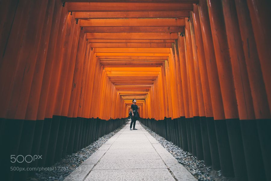 500px Editors Choice : Fushimi Inari-Taisha by nikk_la