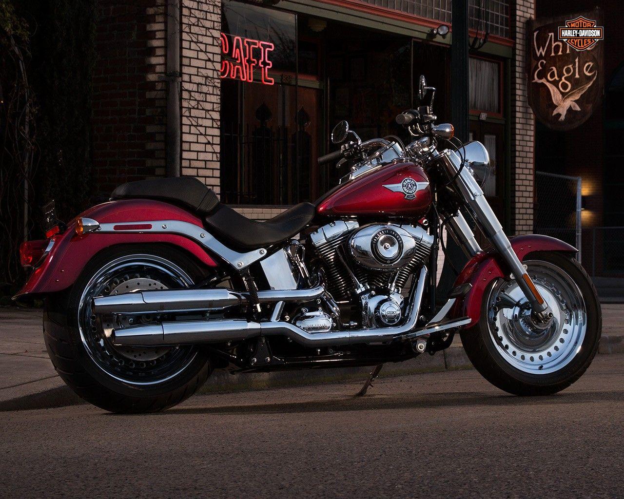 166 Best Images About Harley Davidson On Pinterest: Best 25+ Harley Davidson Fatboy Ideas On Pinterest