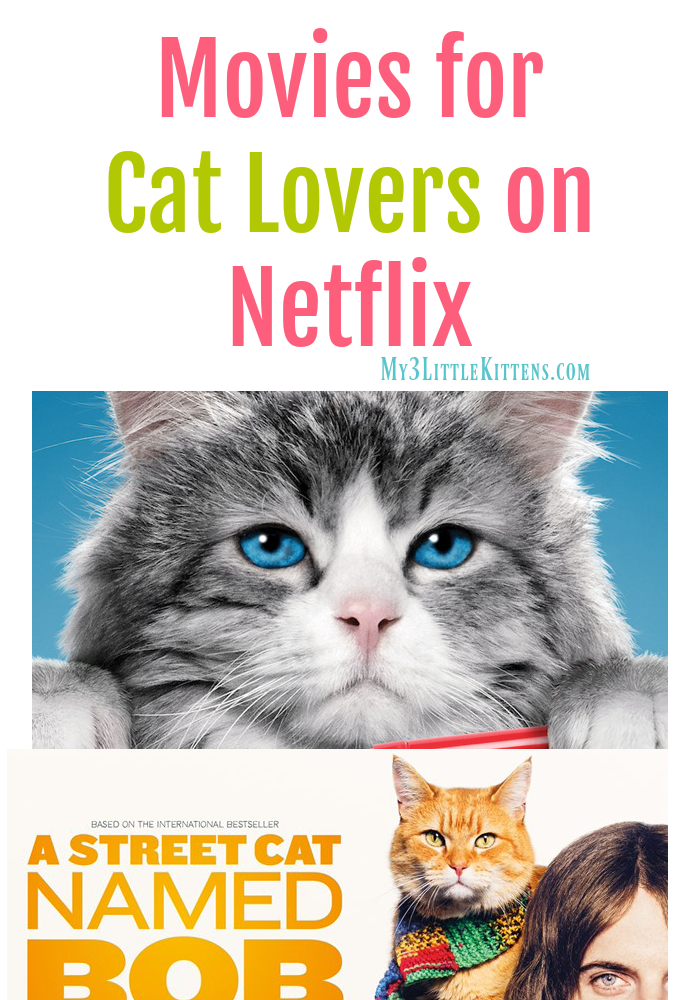 Movies For Cat Lovers On Netflix Nine Lives Movie Cat Movie