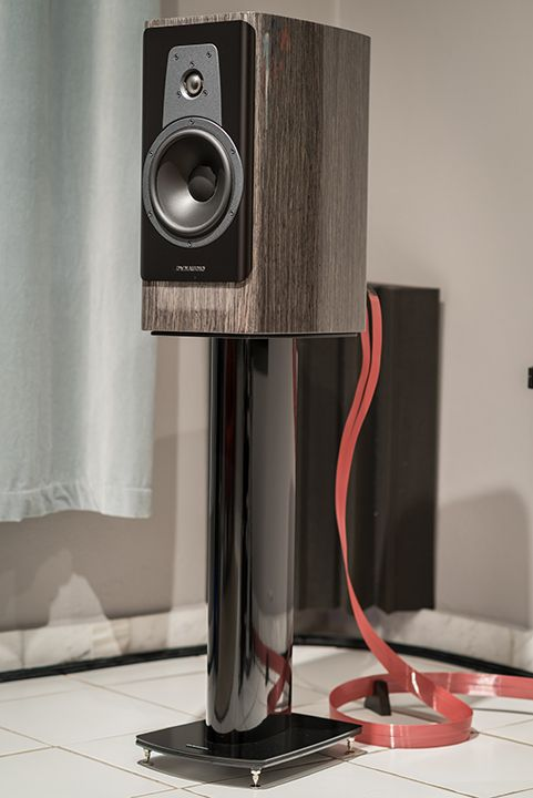 Dynaudio Contour 20 Amp Stands Audiophile In 2019 Hifi