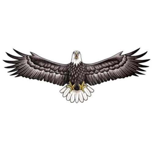 Realistic Eagle With Wings Spread Out Tattoo Design