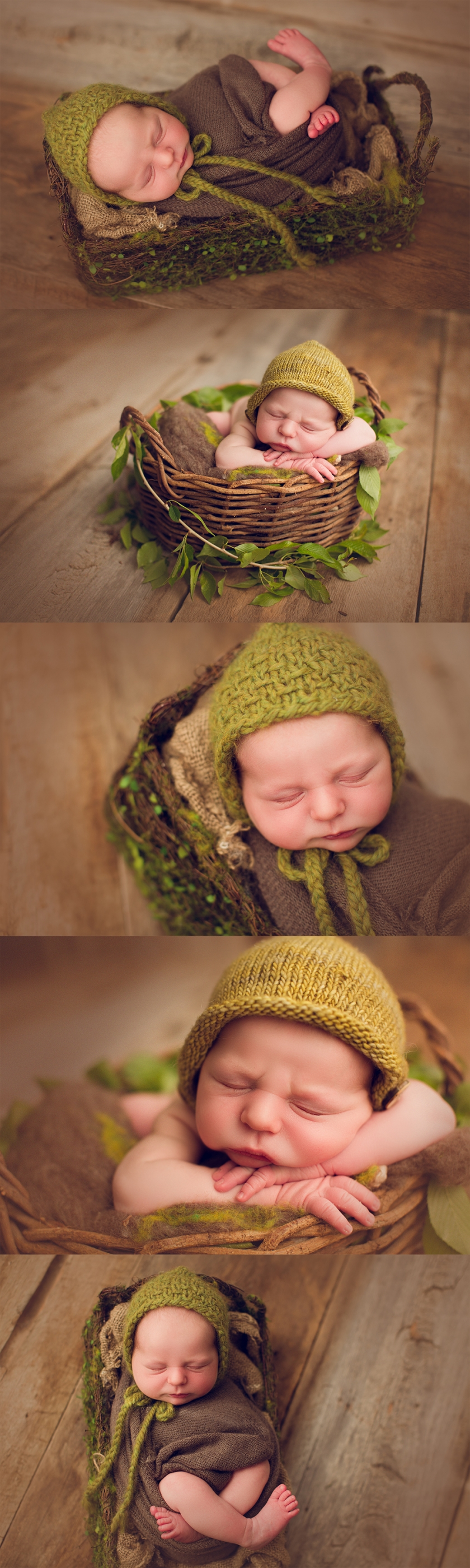 The Fawn And Fern Photography Featured In Baby Boom VOL 74