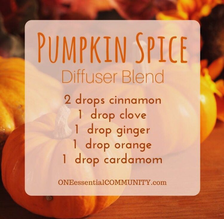 Pumpkin spice essential oil diffuser blend using doterra for How to make pumpkin spice essential oil