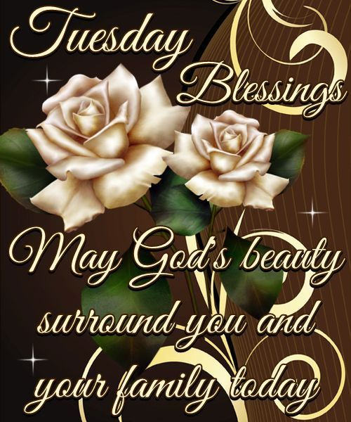 Tuesday Blessings May Gods Beauty Surround You With Your Family