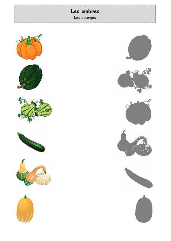 Les courges automne et pommes pinterest exercice - Fruits automne maternelle ...