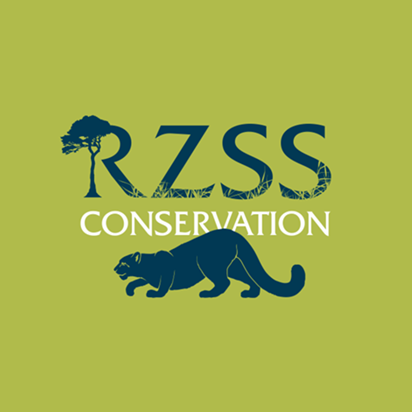 Applied Conservation Genetics Rzss Conservation Zoo Activities Edinburgh Zoo Rockhopper Penguin
