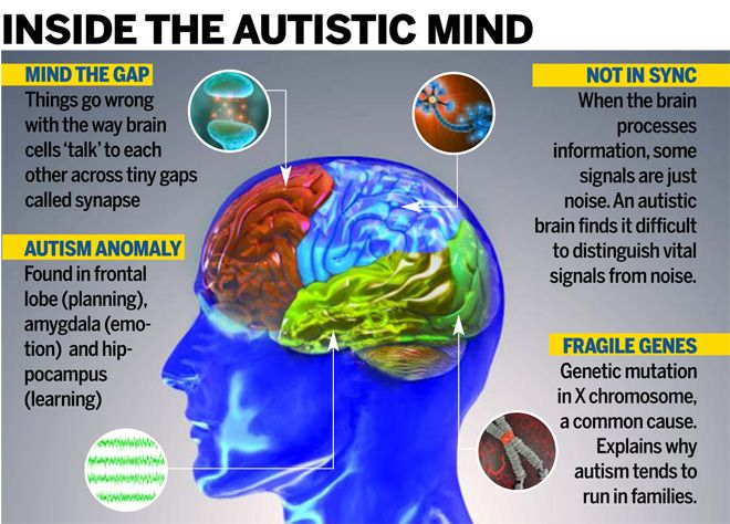 autism and the humanistic theory Psychoanalysis helps kids with autism  the theory is that the brain is more malleable than previously believed and can be reconfigured with proper therapy.