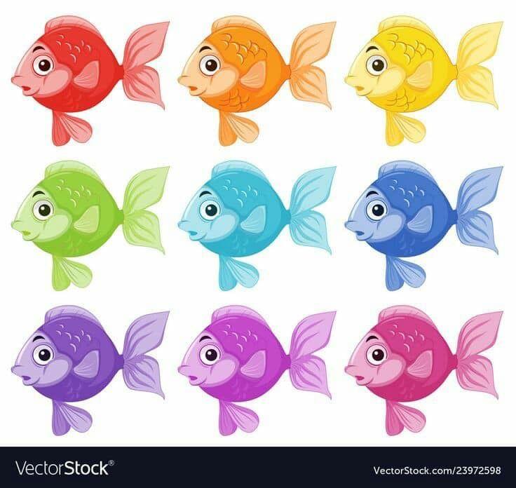 بطاقات رووووعة لتمييز الالوان مفيدة لزيادة التركيز والتواصل البصري عندما يتراوح عمر الطفل مابين 2 3 سنوات يكون قد اصبح مستعد لتعلم الالوان ولكن ليس بالضرورة Colorful Fish Fish Vector Fish Illustration