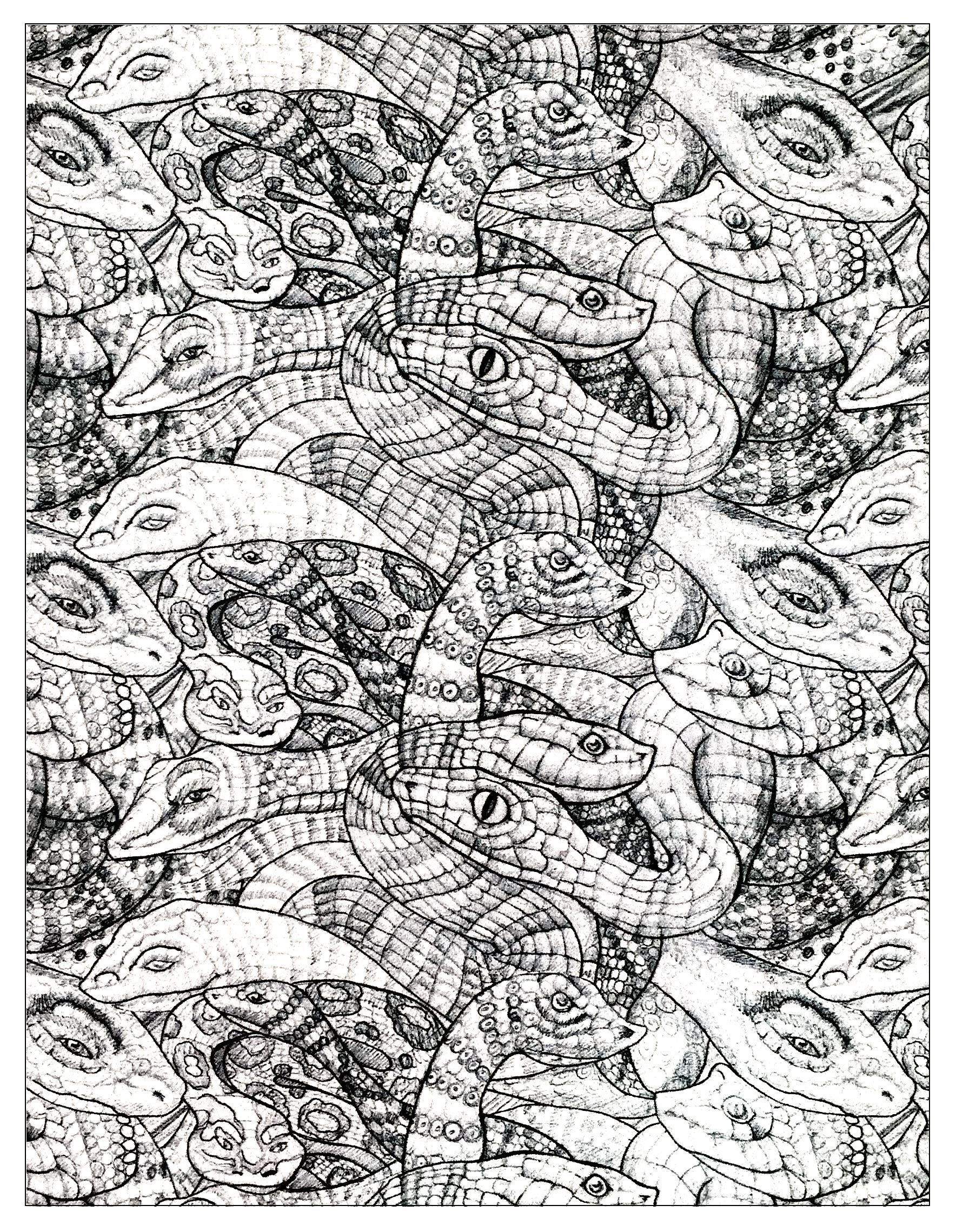 Free Coloring Page Coloring Adult Snakes 2 Numerous Snakes