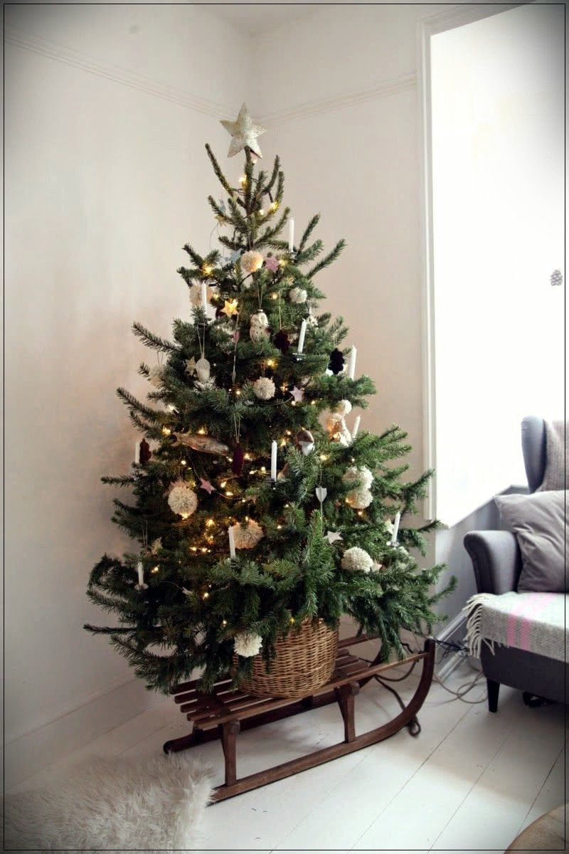 kerst ideeen 2020 Home Design Suggestions | Cool christmas trees, Small christmas