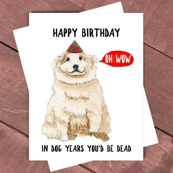 Funny Birthday Card In Dog Years Youd Be Dead Grandma Old Man Sarcastic Birthd