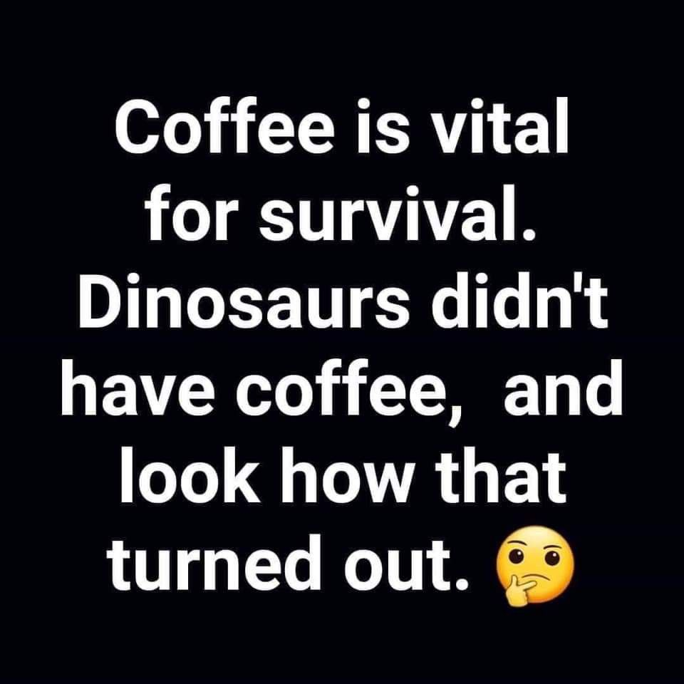 Pin By Ash Bobash On Magic Beans Funny Coffee Quotes Coffee Quotes Coffee Humor