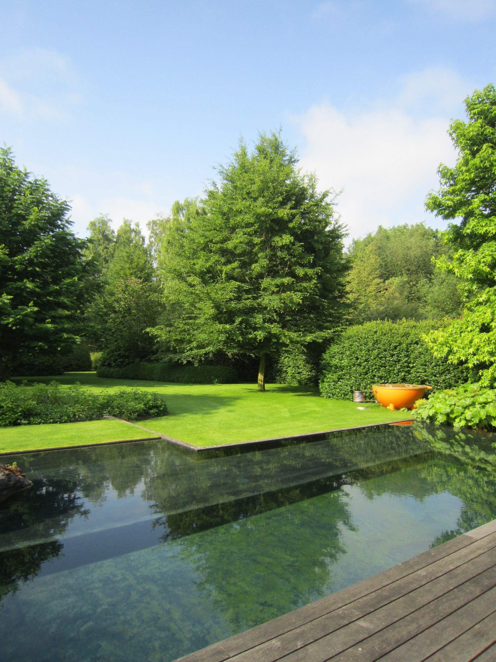Tuinarchitectuur Verbruggen Home Natural Pool Natural Swimming Pools Pool Landscaping
