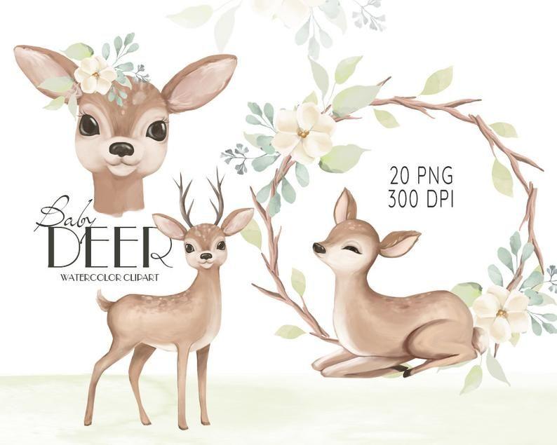 Watercolor Deer Baby Deer Clipart Watercolor Little Animals Cute Deer Baby Shower Clip Art Mother Deer Illustration Nursery Graphics Deer Illustration Watercolor Deer Baby Deer