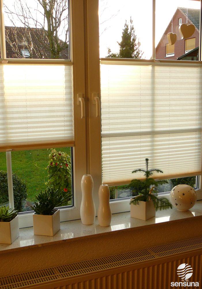 Sichtschutz Plissee Von Sensuna Fur S Wohnzimmer Fenster