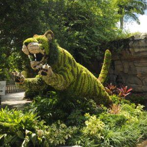 01c1a9863160f0b30414c5414a490fab - Busch Gardens Dark Side Of The Garden