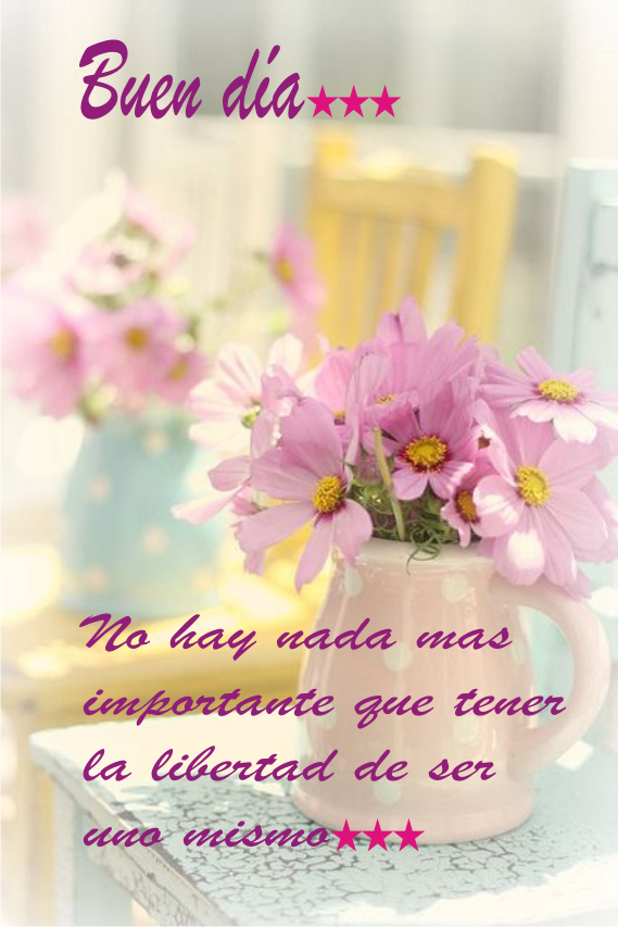 https://www.facebook.com/pages/Lenceria-Graciela/430765273672233