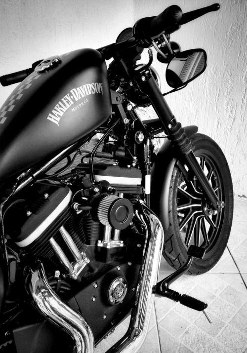 takearideonthewildside1:  http://bit.ly/1JCNeKV.... Harley Harley-Davidson Harley Davidson sportster gas tank Details
