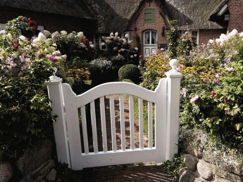 Hier Finden Sie Moderne Pflegeleichte Ideen Ihren Vorgarten Zu Gesta Er Finden Sie Moderne Pflegeleichte Ide In 2020 Vorgarten Vorgarten Gestalten Bepflanzung