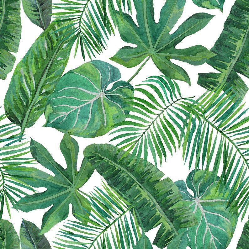 Removable Wallpaper Tropical Palm Leaf Banana Leaf Safari Etsy Green Leaf Wallpaper Nursery Wallpaper Leaves Wallpaper Iphone