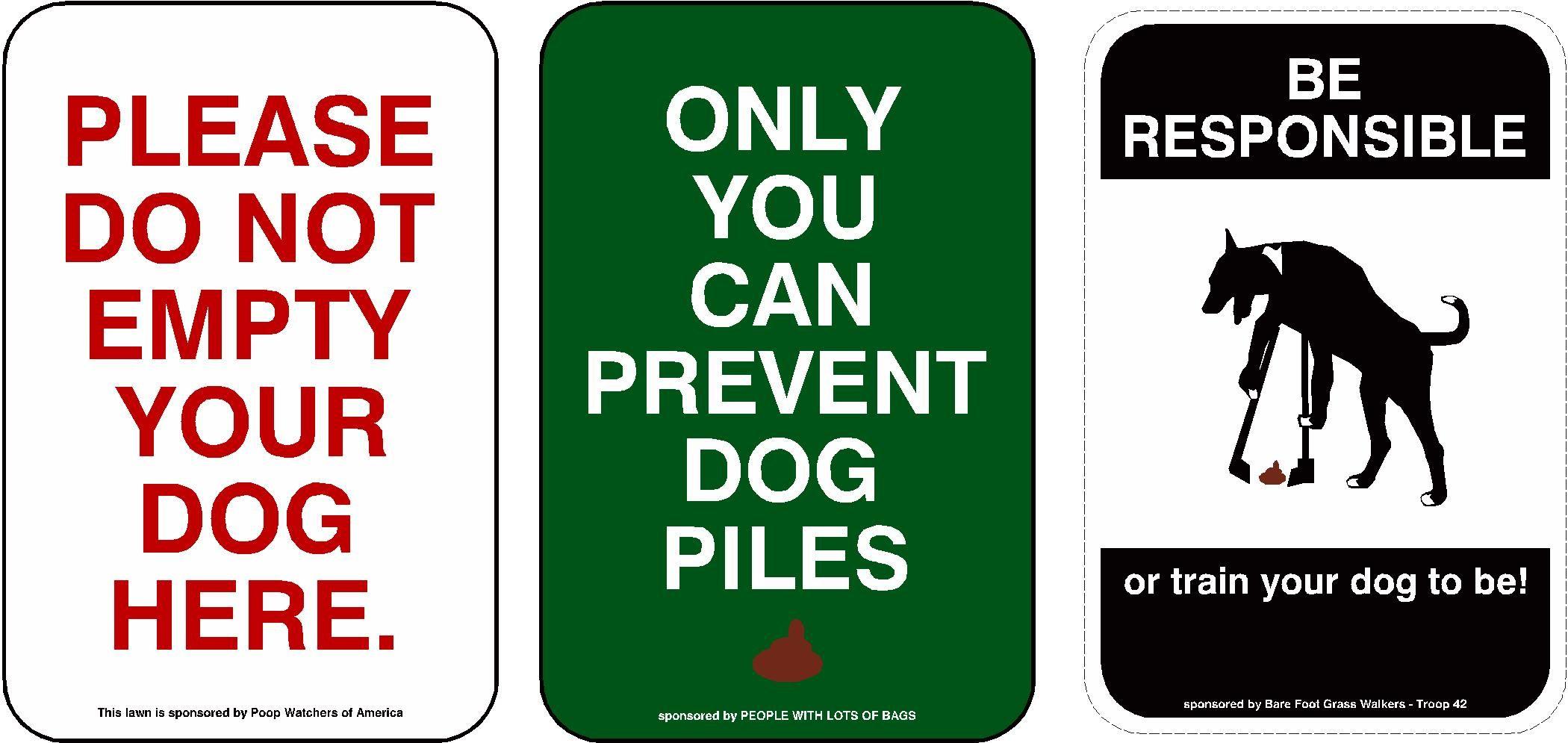 Pin On A Dog S Life