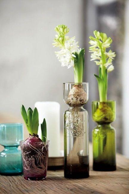Wiosenne Kwiaty Cebulowe W Szklanych Naczyniach Vase Flowers Vase Design