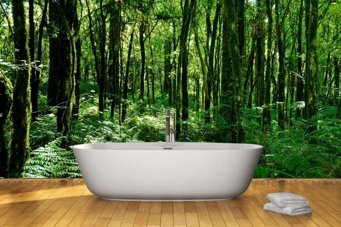 Bathroom Design With Brazilian Rainforest Wall Mural The Spirit Of Wall  Murals Nature Part 53
