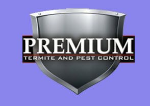 At Pest Control Long Beach Ca Our Pest Control Professionals Know Exactly How Unsettling And Distracting The Discovery Of A Pe With Images Pest Control Pest Removal Pests
