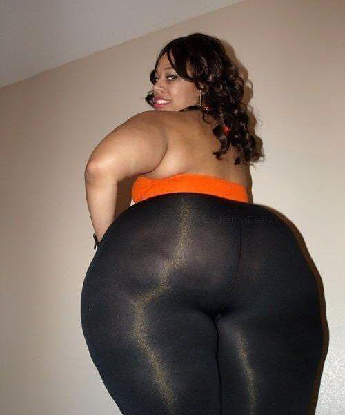 New bbw booty