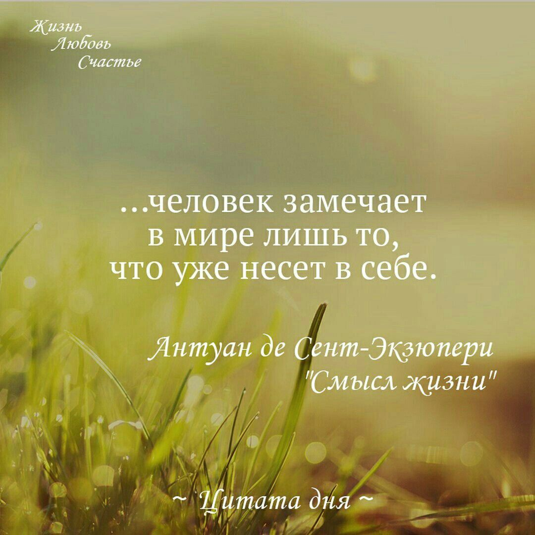 О жизни цитатами