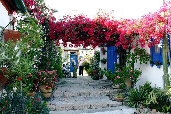 Pin De Ma Lerio Lucero En Magical Gardens Patios Cordobeses Patios De Cordoba Patio Español