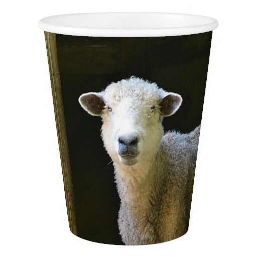 Sweetie Pie Sheep Paper Cup