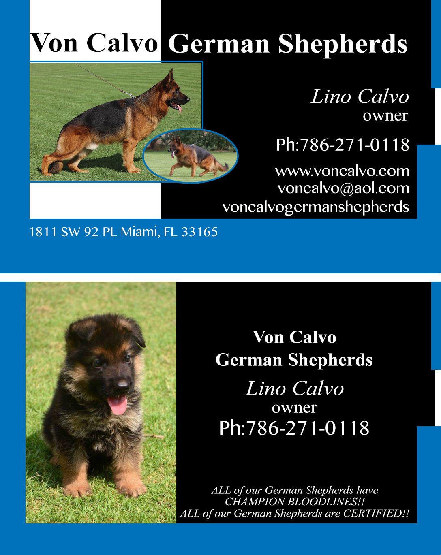 Learn about Von Calvo German Shepherds Inc., German