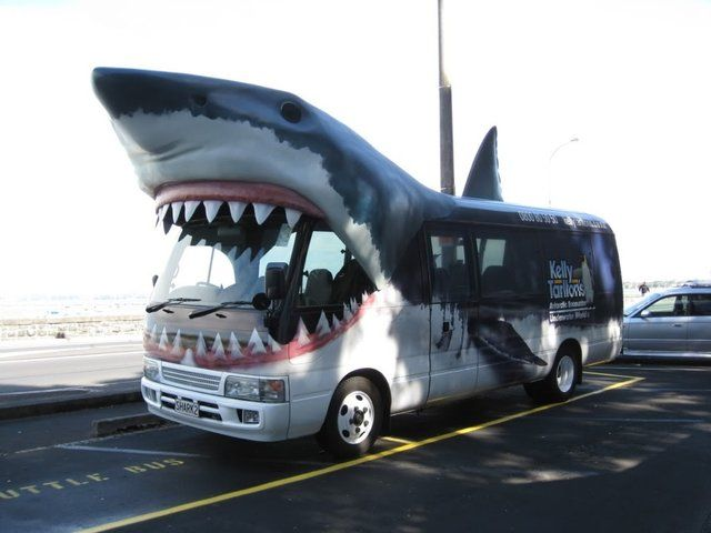 This Is Shark Bus Its An Awesome Shuttle That Cruises Around - Cool cars auckland