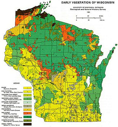 Early vegetation of Wisconsin (map from 1965). Native