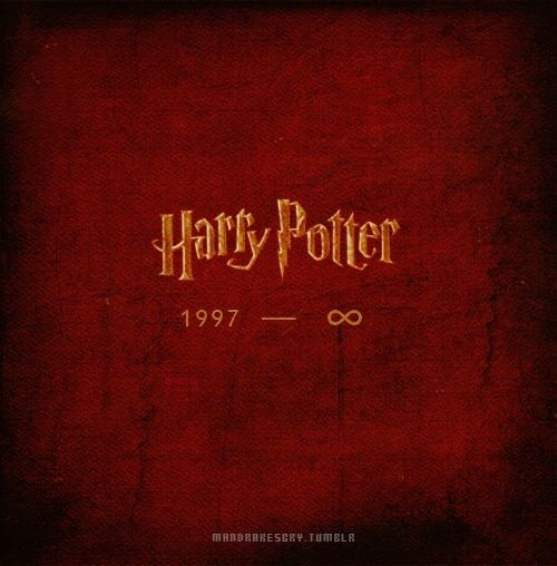 Harry Potter Never Ends Because The Believers Keep It Alive Phoenix Harry Potter Harry Potter Series Harry Potter