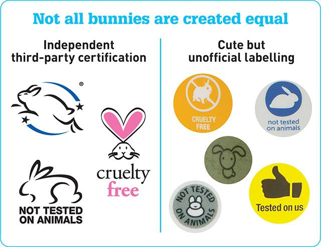 Choice Reveals Some Companies Are Still Testing On Animals But