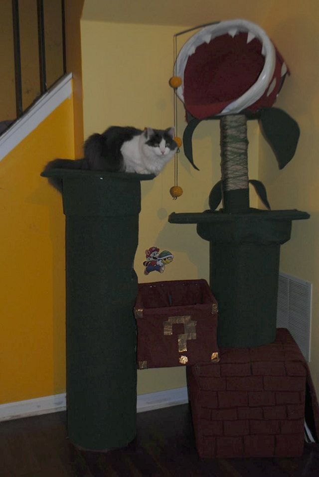 Diy cat tree do it yourself super mario piranha plant cat tree diy cat tree do it yourself super mario piranha plant cat tree geekologie solutioingenieria Image collections