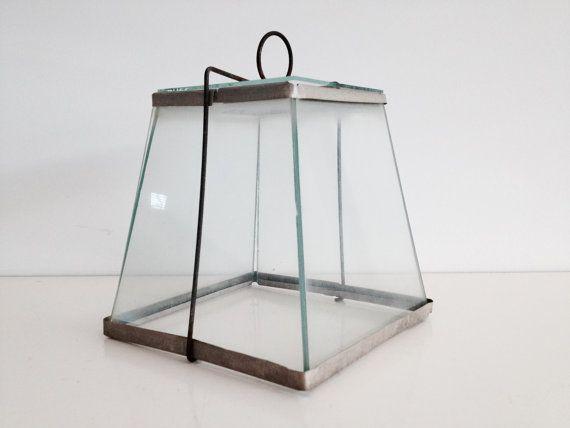 Vintage Wire and Glass Cloche, Old Terrarium, Small Glass Garden ...