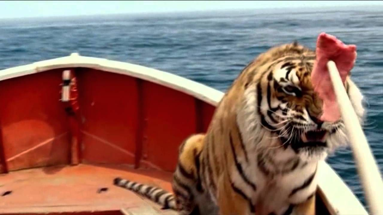 Name of tiger in life of pi the best tiger of 2018 for Orange juice life of pi