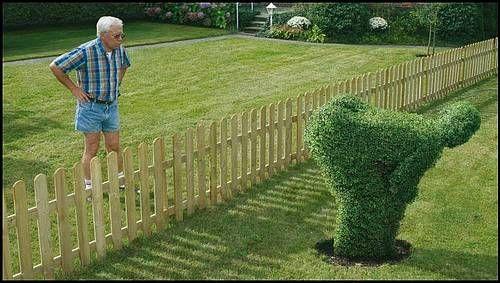 _Vormsnoei.  Ultimate pruning.