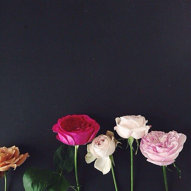 Yukiko Masuda Flower Backgrounds Iphone Wallpaper Images Iphone Wallpaper Fall