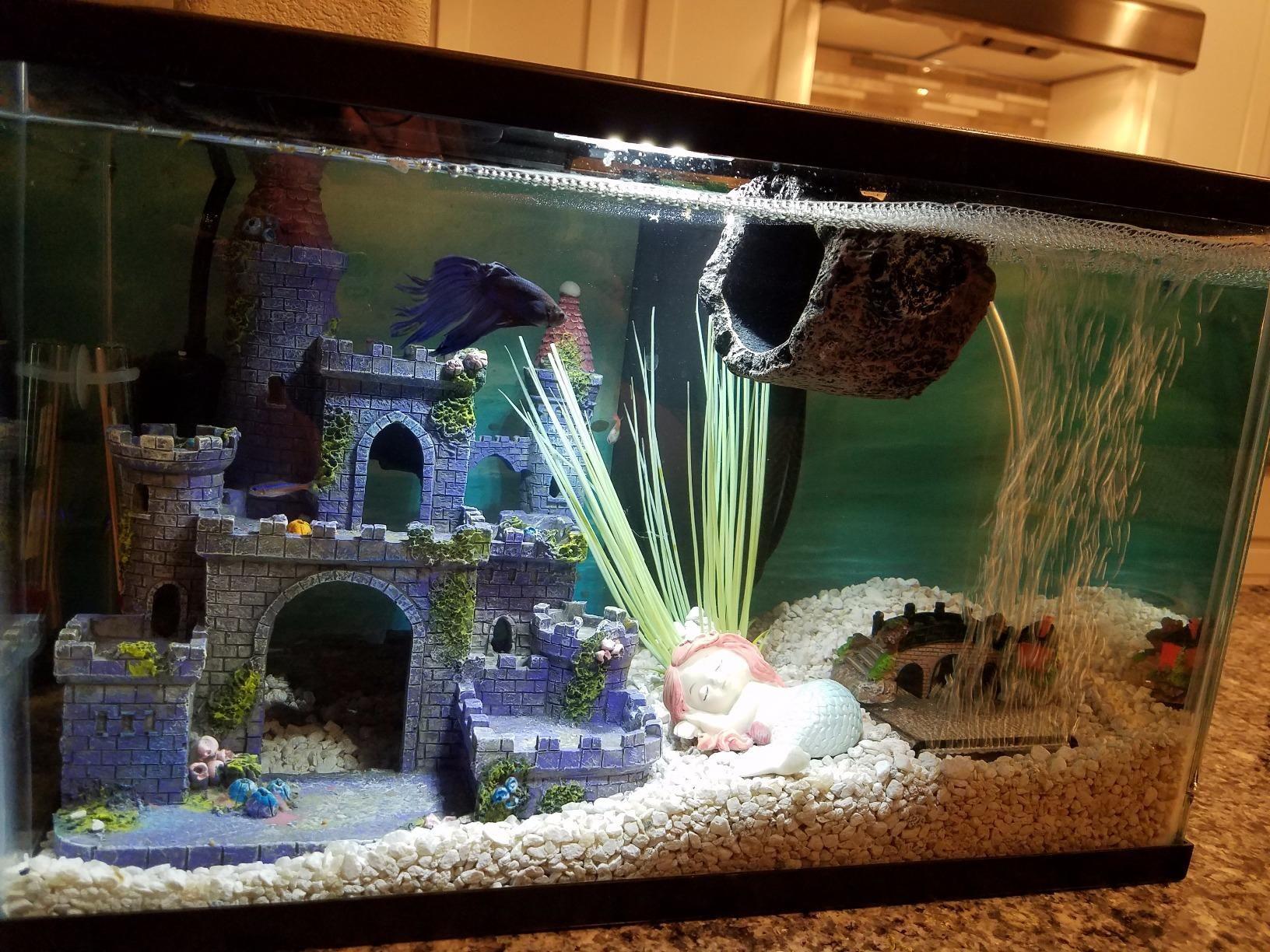 Amazon Com Miniature Fairy Garden And Aquarium Decorations Resin