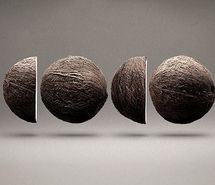 Inspiring picture brown, clever, cocco, coco, coconut, conceptual. Resolution: 480x337 px. Find the picture to your taste!
