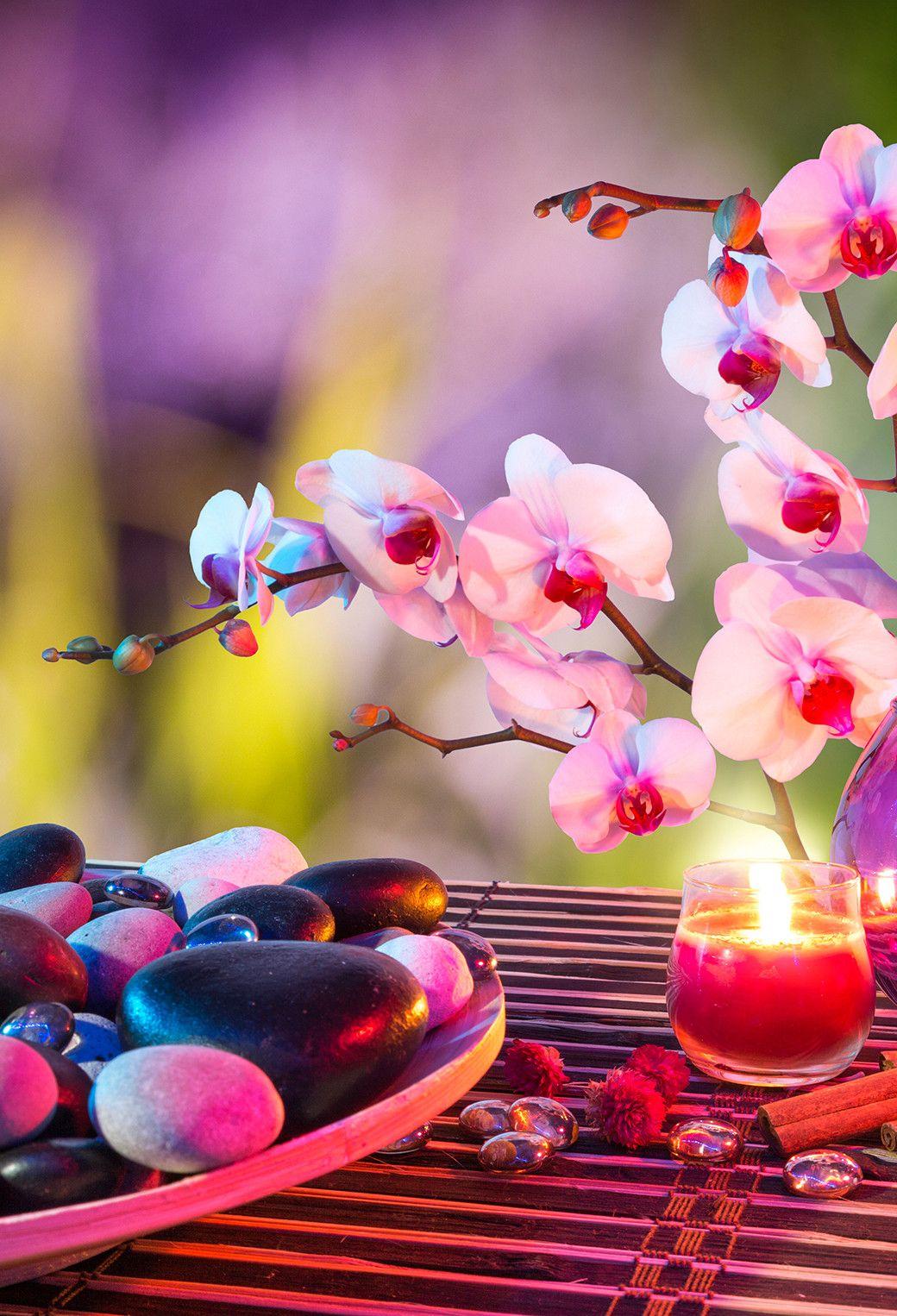 Fond D Cran Zen Attitude Avec Hd Iphone X 8 7 6 Zen Attitude Free Idees Et Zen Attitude 3wallpapers Iphone Par Fond Ecran Zen Paysage Zen Fond D Ecran Orchidee
