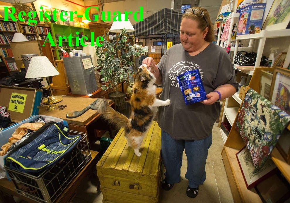 Sara's shelter thrift shop Animal shelter, Shelter