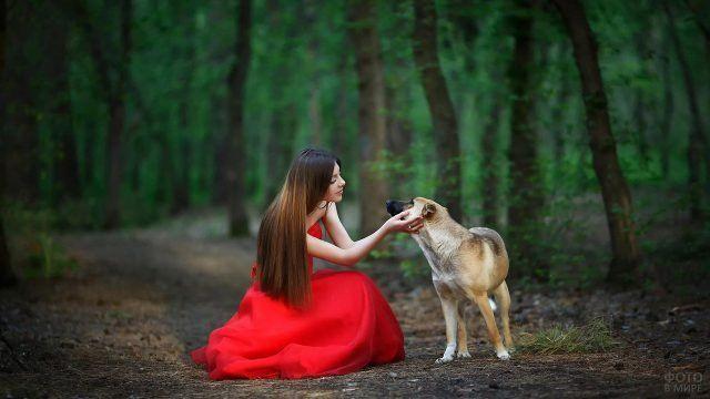 Девушки с собаками (32 фото) (с изображениями) | Идеи для ...